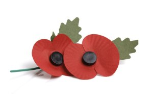 What to do with your poppy? Katy Pearson says...