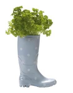 Wellington boot planter, £30
