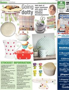 Katy Pearson interiors in the Daily Gazette