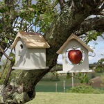 Nesting Box and Apple Feeder
