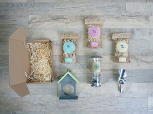 Boxwild bird feeder gift box, bird feeding, Katy Pearson, #whatkatydid